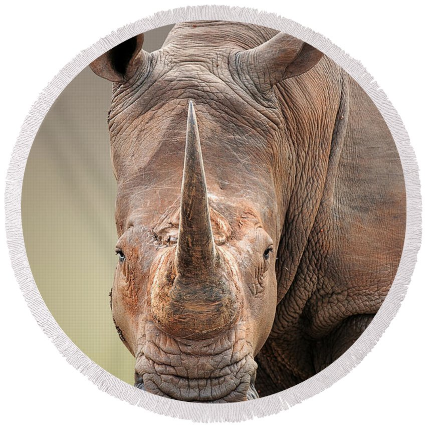 Square-lipped Round Beach Towel featuring the photograph White Rhinoceros portrait by Johan Swanepoel