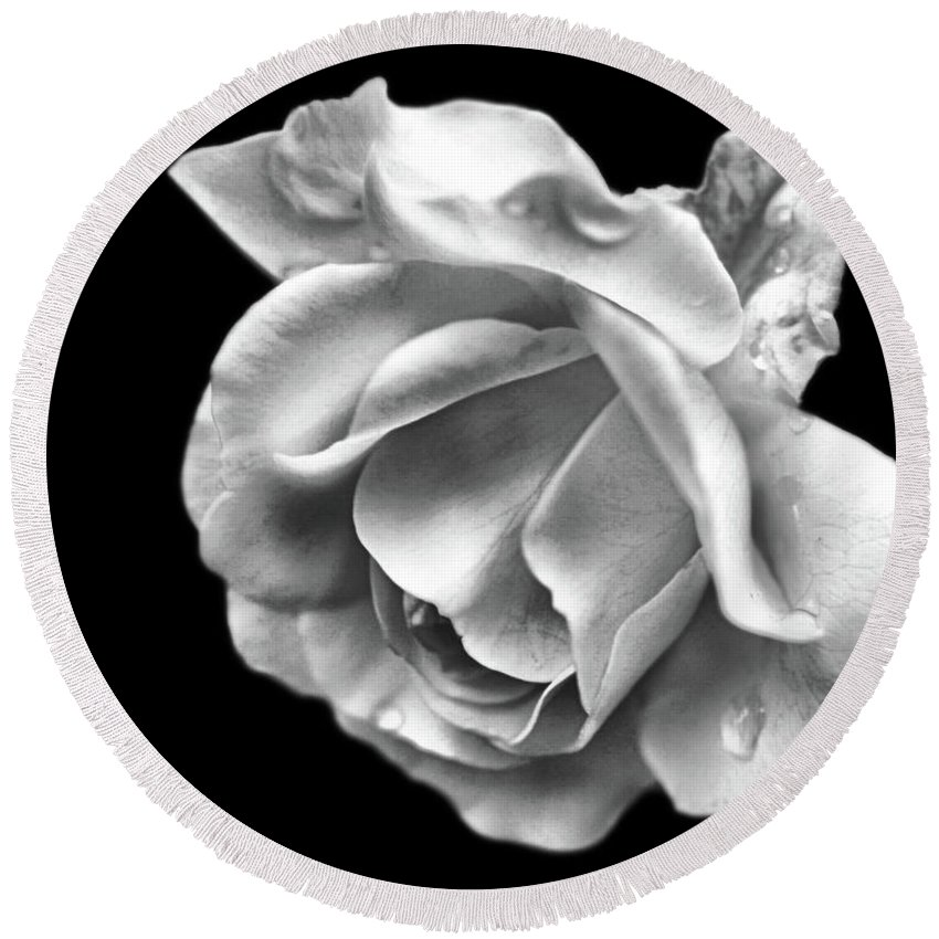 Rose Round Beach Towel featuring the photograph White Rose Aglow by Smilin Eyes Treasures