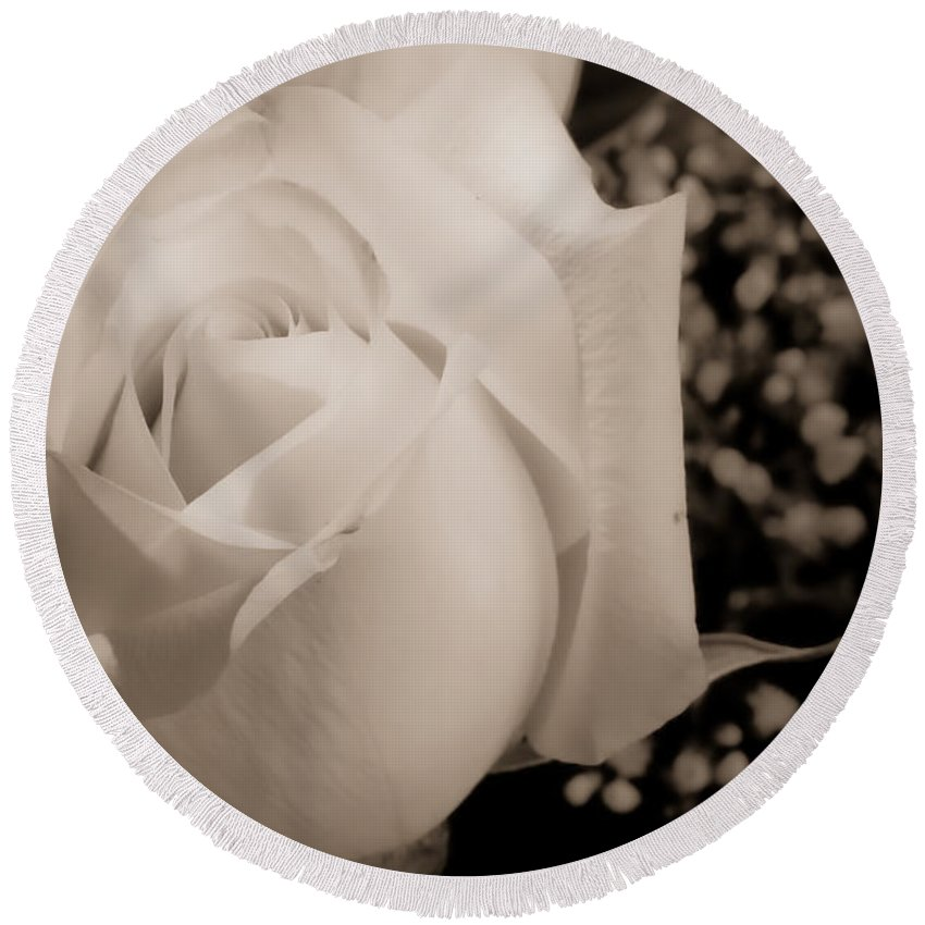 Flowers Round Beach Towel featuring the photograph White Rose Bw Fine Art Photography Print by James BO Insogna