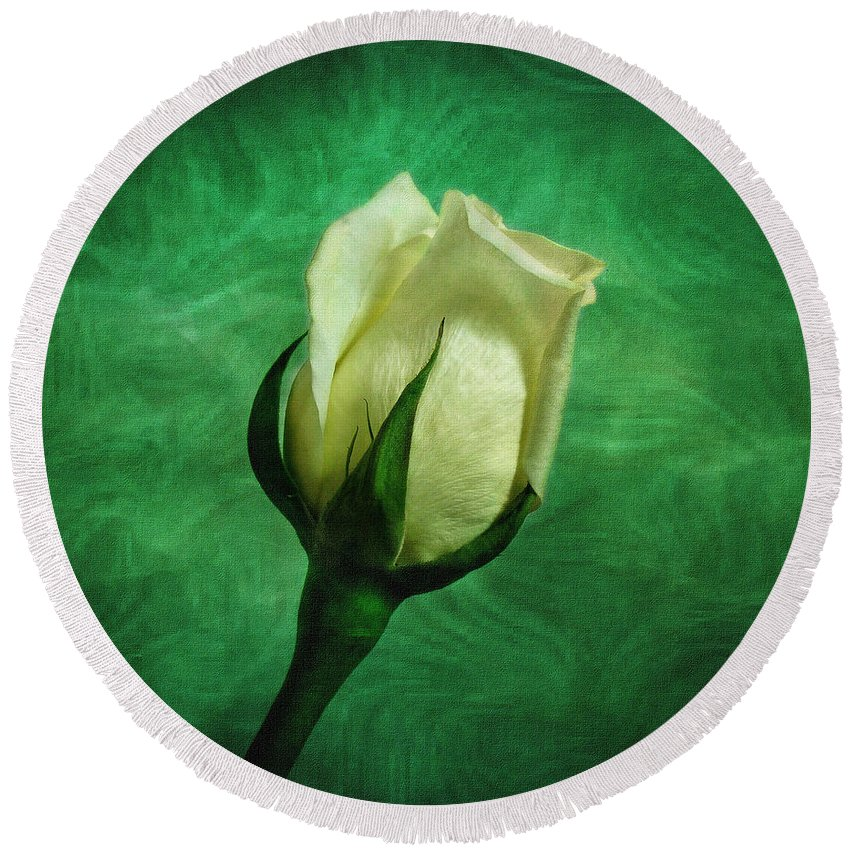 Roses Round Beach Towel featuring the photograph White Rose by Sandy Keeton
