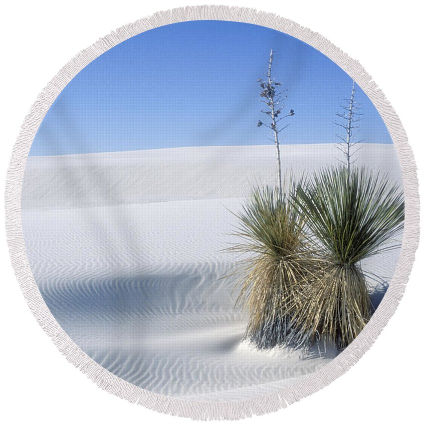 White Sands Round Beach Towel featuring the photograph White Sands Dune And Yuccas by Sandra Bronstein