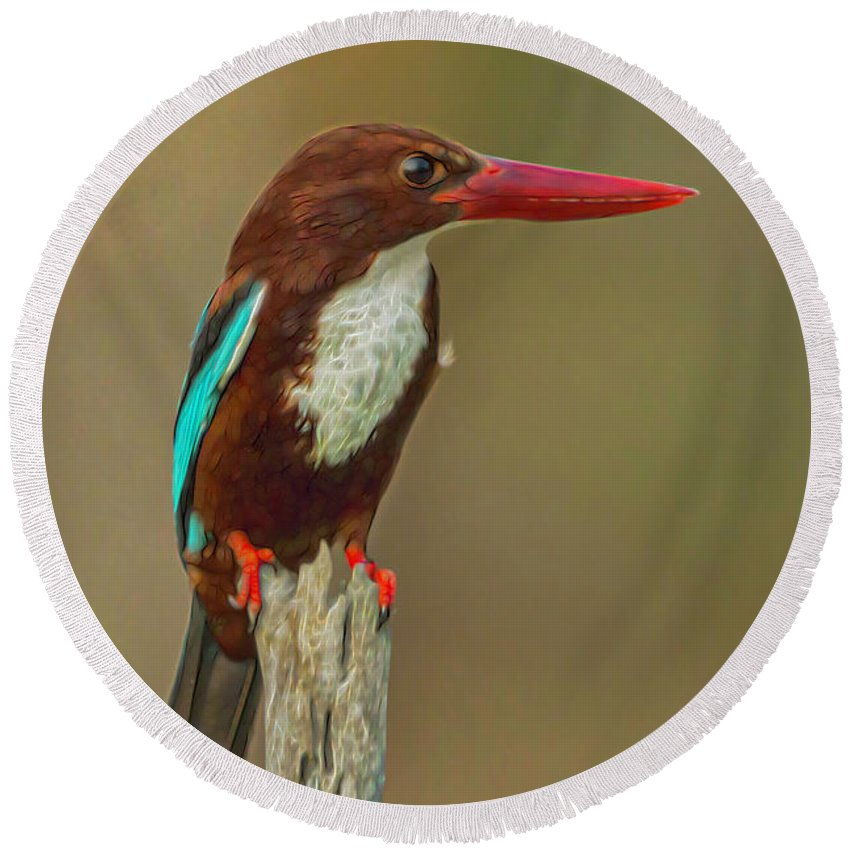 Halcyon Smyrnensis Round Beach Towel featuring the digital art White-throated Kingfisher by Ron Racine