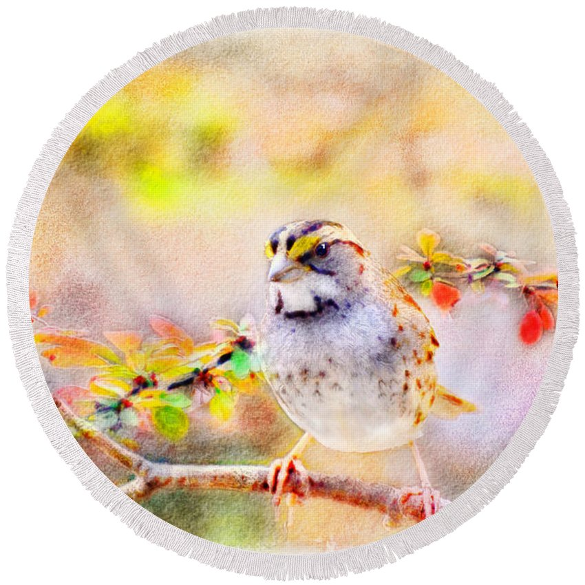 Nature Round Beach Towel featuring the photograph White Throated Sparrow - Digital Paint 1                       by Debbie Portwood
