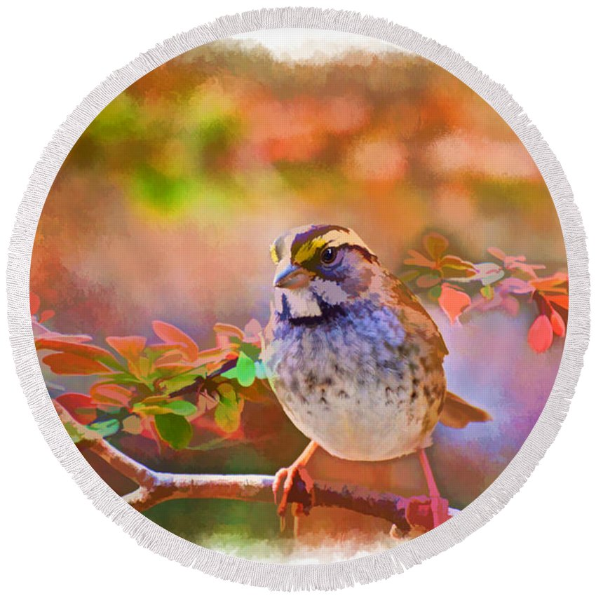 Nature Round Beach Towel featuring the photograph White Throated Sparrow - Digital Paint 3 by Debbie Portwood