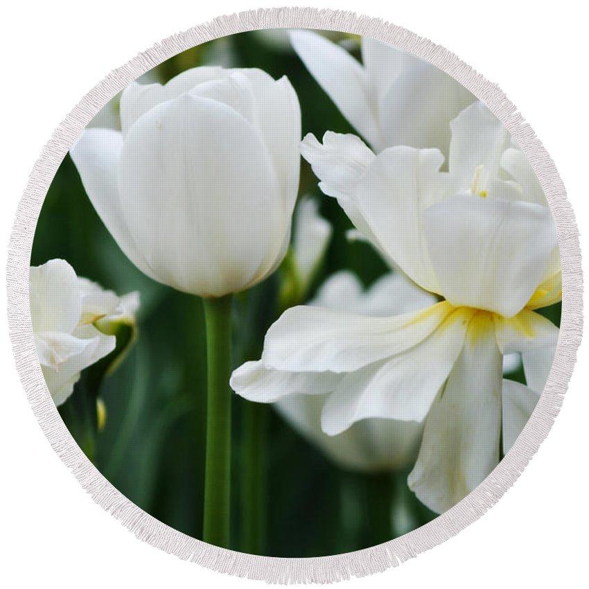 Chicago Botanic Garden Round Beach Towel featuring the photograph White Tulips by Kyle Hanson