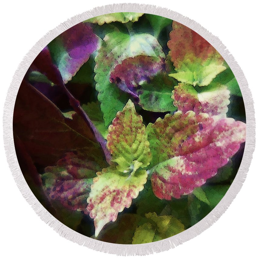Coleus Round Beach Towel featuring the painting Who Needs Flowers by RC DeWinter