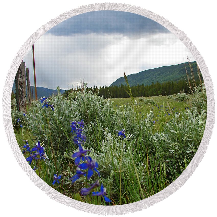 Wild Flowers Round Beach Towel featuring the photograph Wild Delphinium by Heather Coen