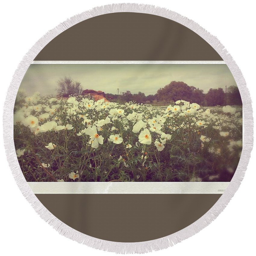 Wild Flowers Round Beach Towel featuring the photograph Wild Flowers Soft by Marisela Mungia