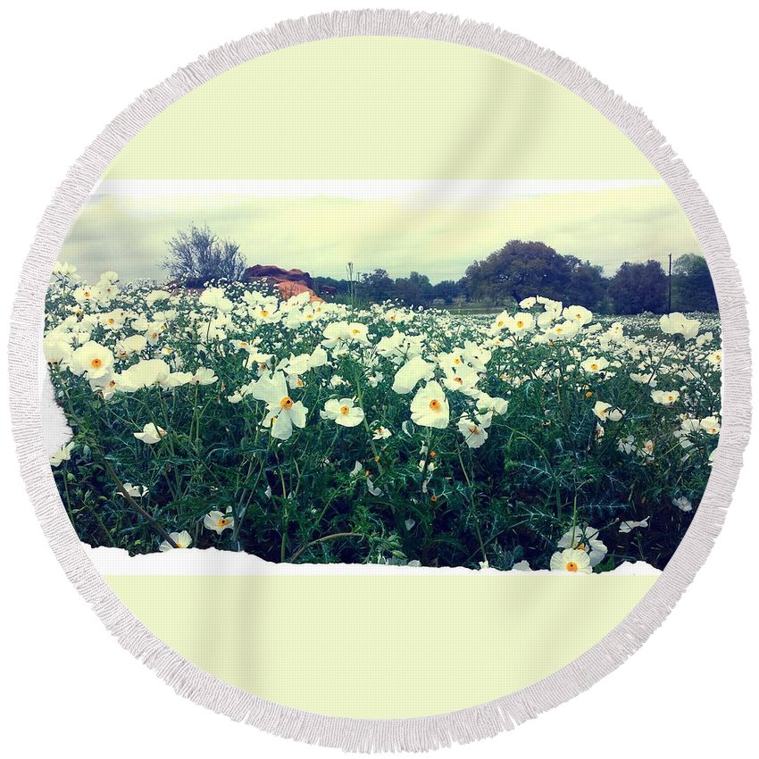 Wild Flowers Round Beach Towel featuring the photograph Wild Flowers White by Marisela Mungia