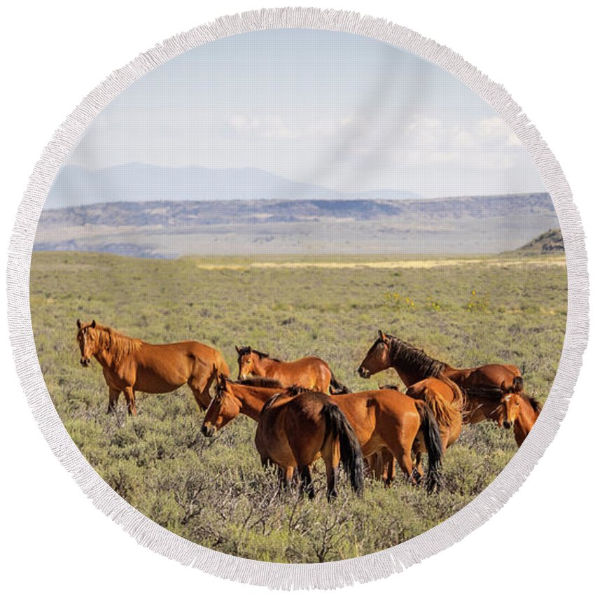 Wild Horse Mesa Round Beach Towel featuring the photograph Wild Horse Mesa by Tommy Lyles