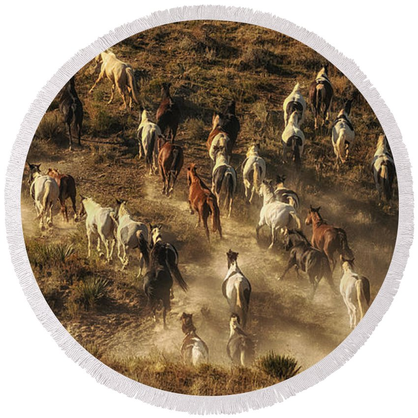 Wild Horses Gone Wild Round Beach Towel featuring the photograph Wild Horses Gone Wild by Priscilla Burgers
