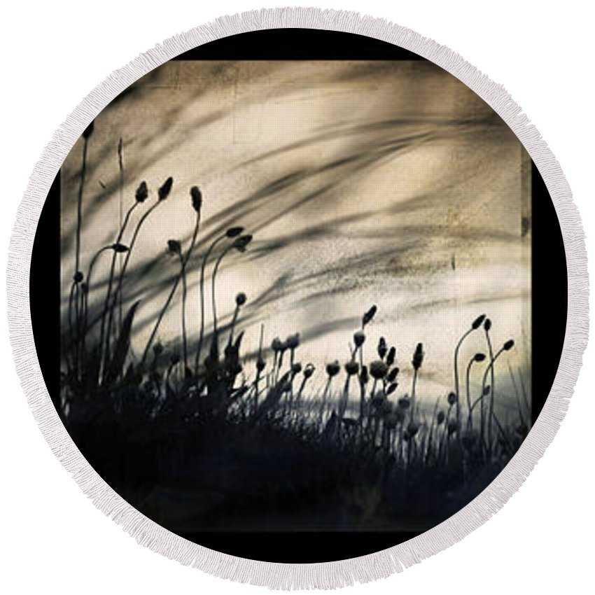 Grass Mood Triptych Wild Art Fineart Dorit Nature Round Beach Towel featuring the photograph Wild Things by Dorit Fuhg