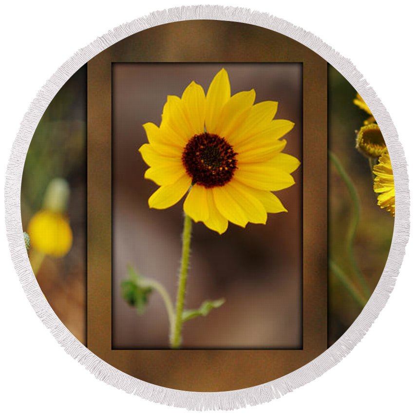 Wildflower Round Beach Towel featuring the photograph Wildflower 3 by Jill Reger