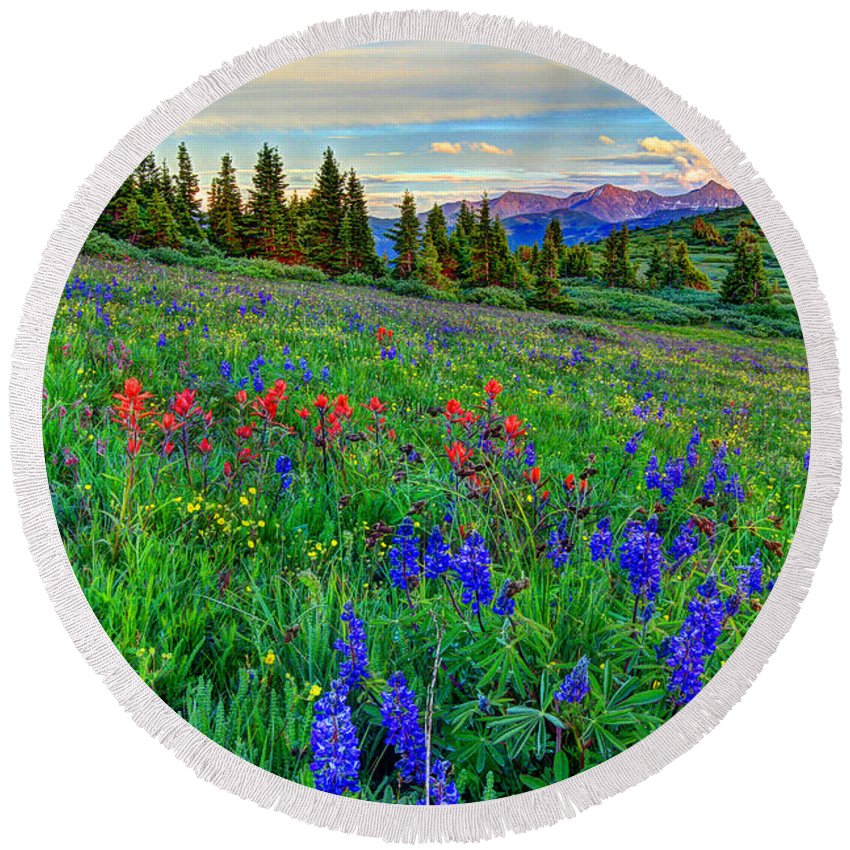 View Round Beach Towel featuring the photograph Wildflower Hill by Scott Mahon
