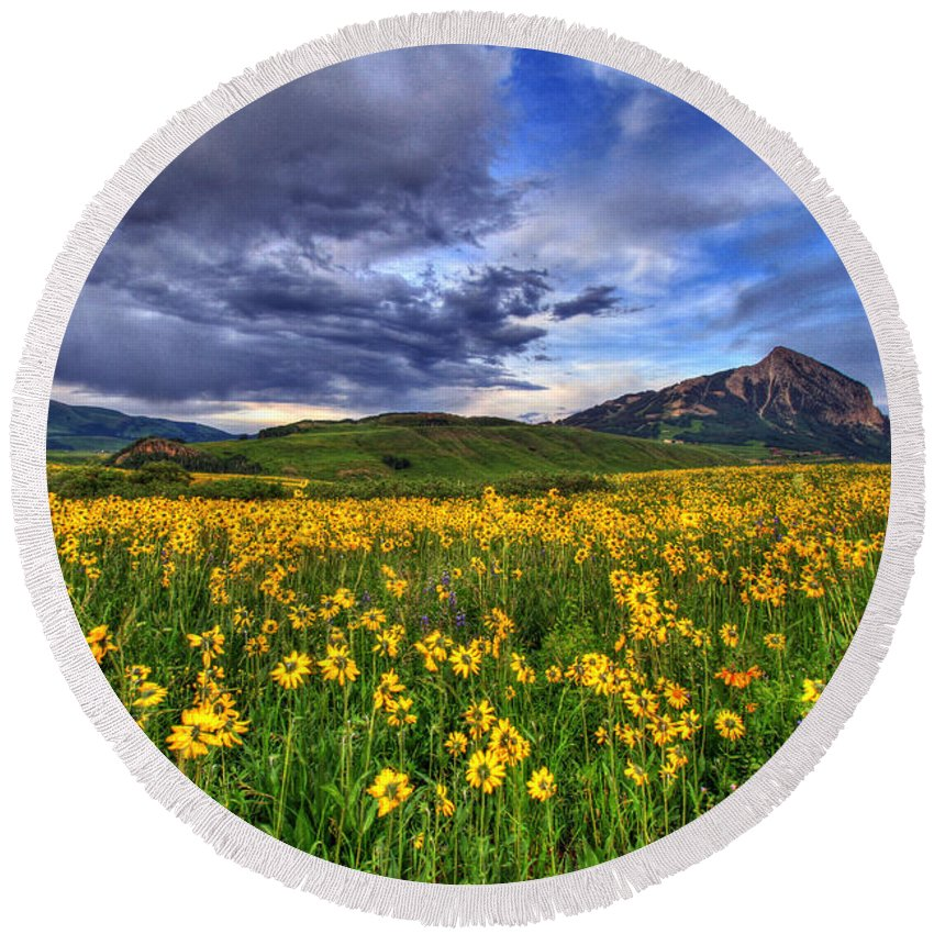 Photo Round Beach Towel featuring the photograph Wildflower Storm by Scott Mahon