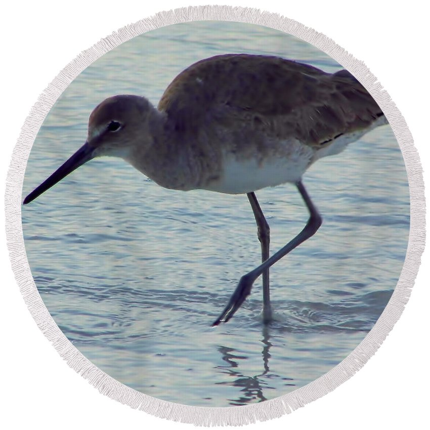 Willet Round Beach Towel featuring the photograph Willet In The Surf by D Hackett