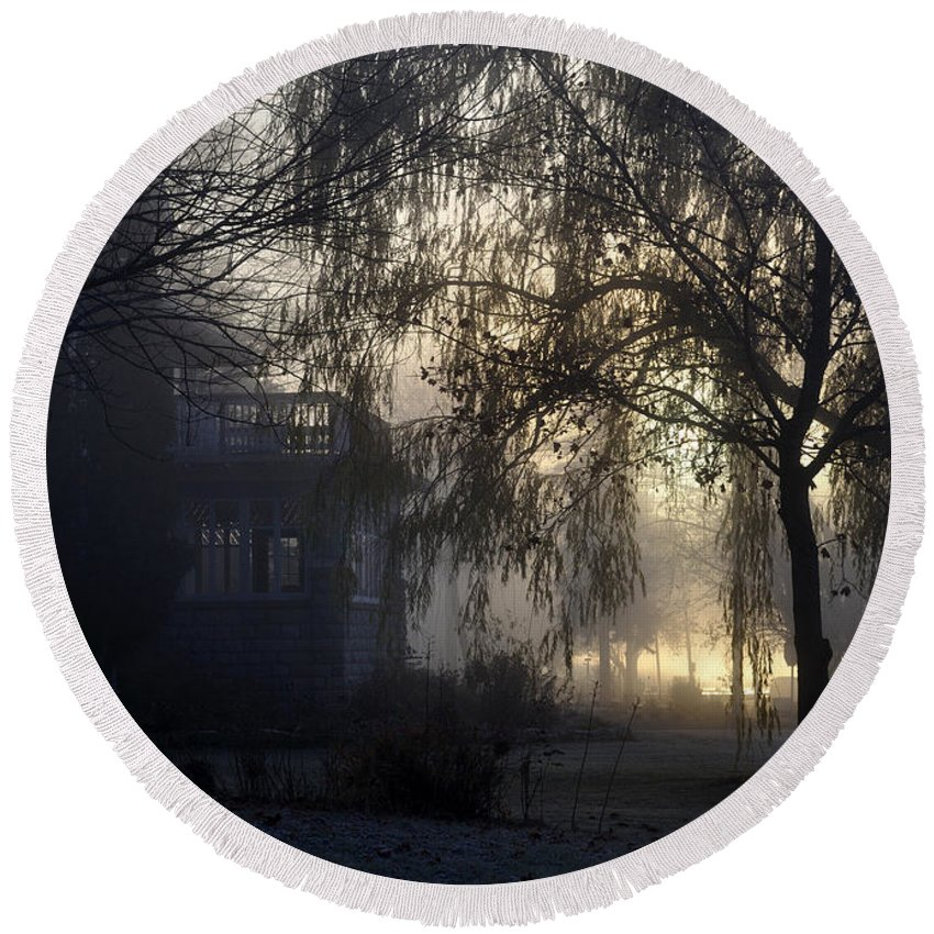 Fog Round Beach Towel featuring the photograph Willow In Fog by Tim Nyberg
