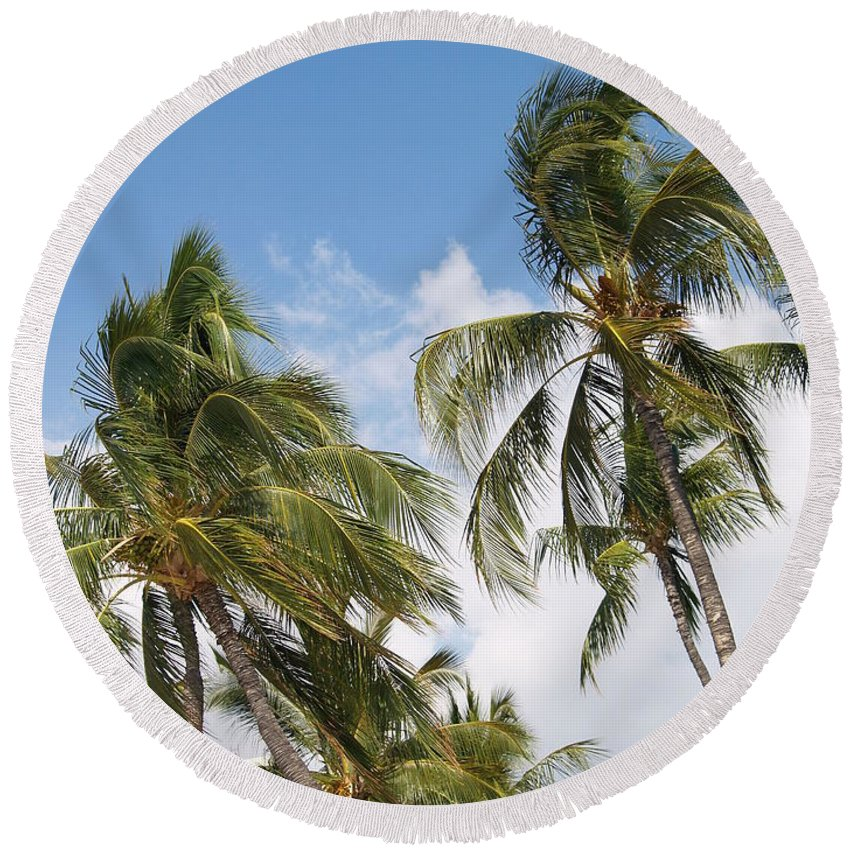 Scenic Round Beach Towel featuring the photograph Wind Though The Trees by Athala Carole Bruckner