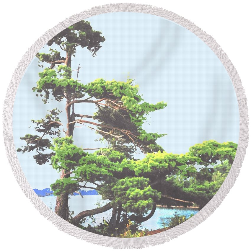 Pine Round Beach Towel featuring the photograph Windswept by Ian MacDonald