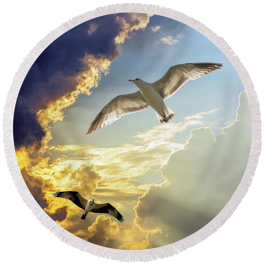 2d Round Beach Towel featuring the photograph Wings Against The Storm by Brian Wallace