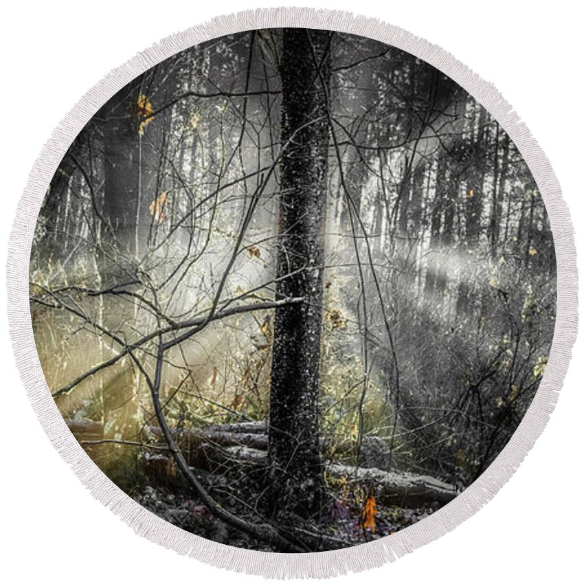 2016 Round Beach Towel featuring the photograph Misty Winter Forest by Ken McAllister