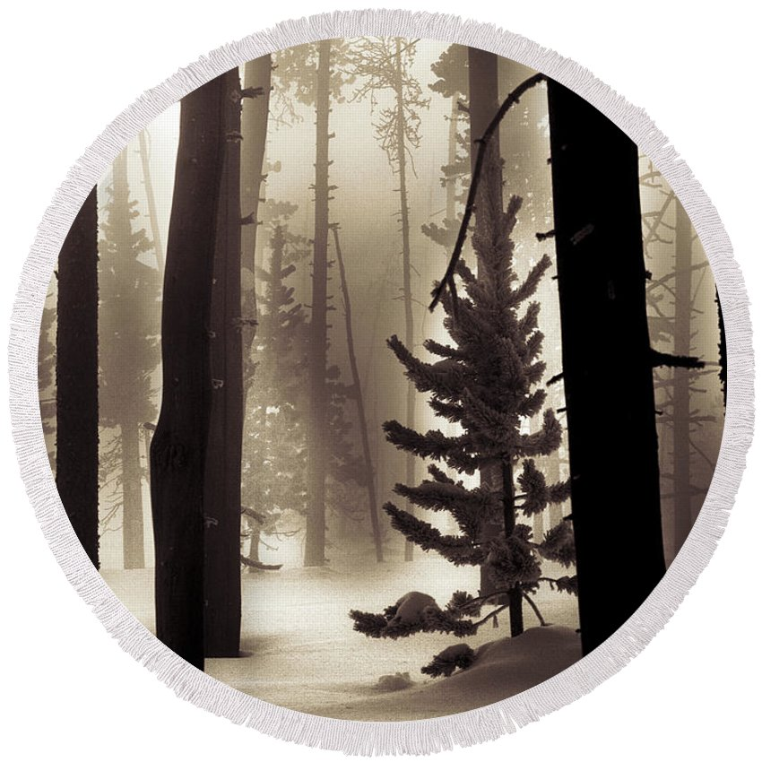 Winter Round Beach Towel featuring the photograph Winter Forest by Leland D Howard