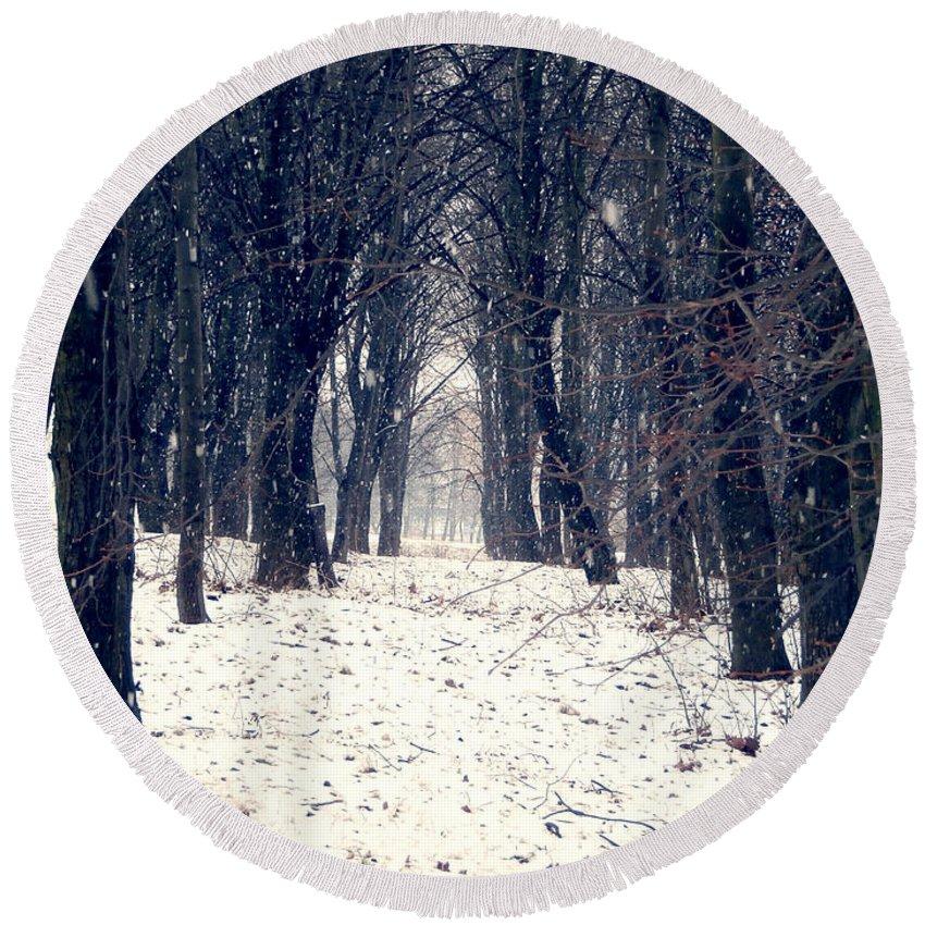 Forest Round Beach Towel featuring the photograph Winter Forest by Miroslav Nemecek