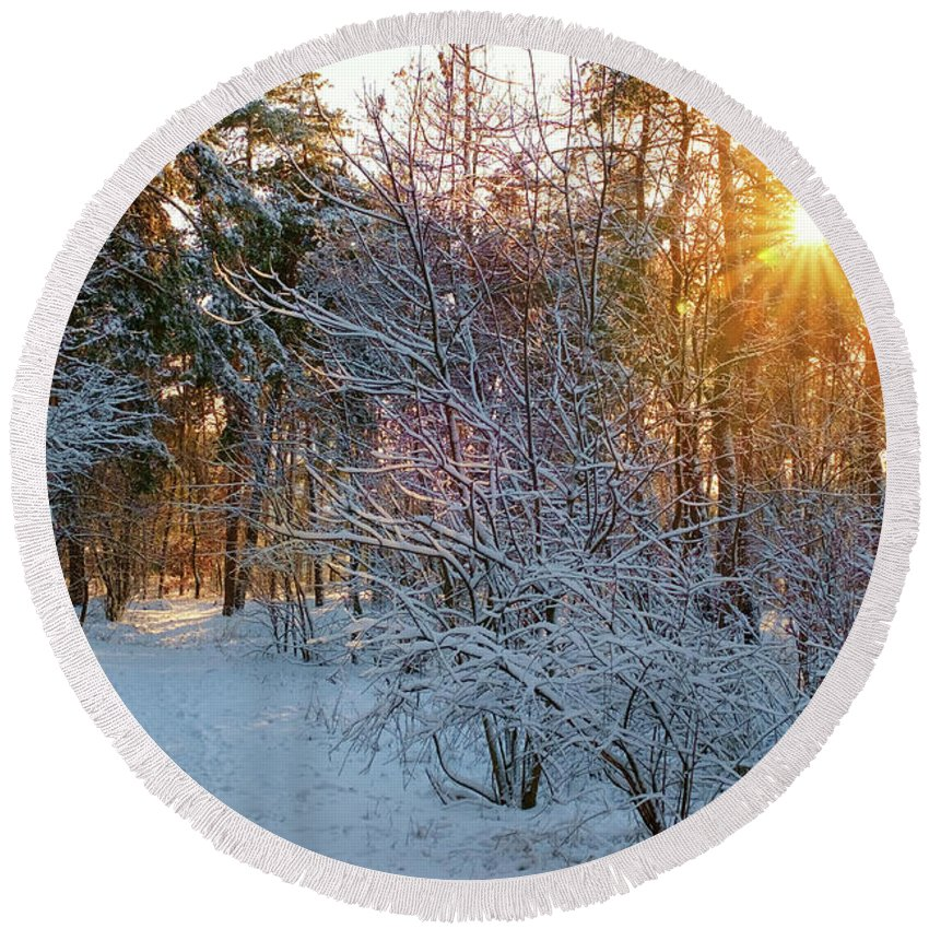 Landscape Round Beach Towel featuring the photograph Winter Forest by Nataly Landar