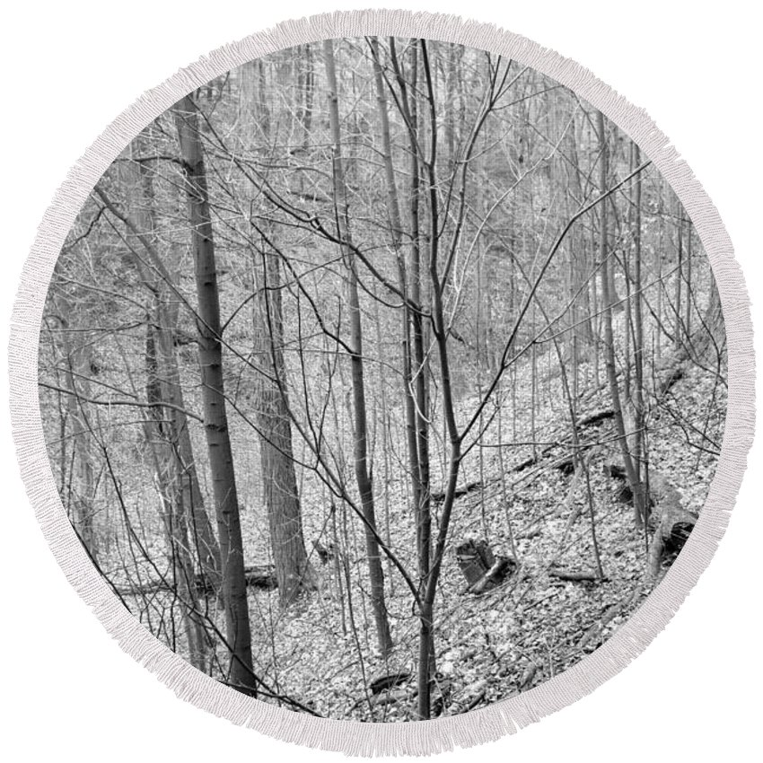 Winter Round Beach Towel featuring the photograph Winter Forest by Valentino Visentini