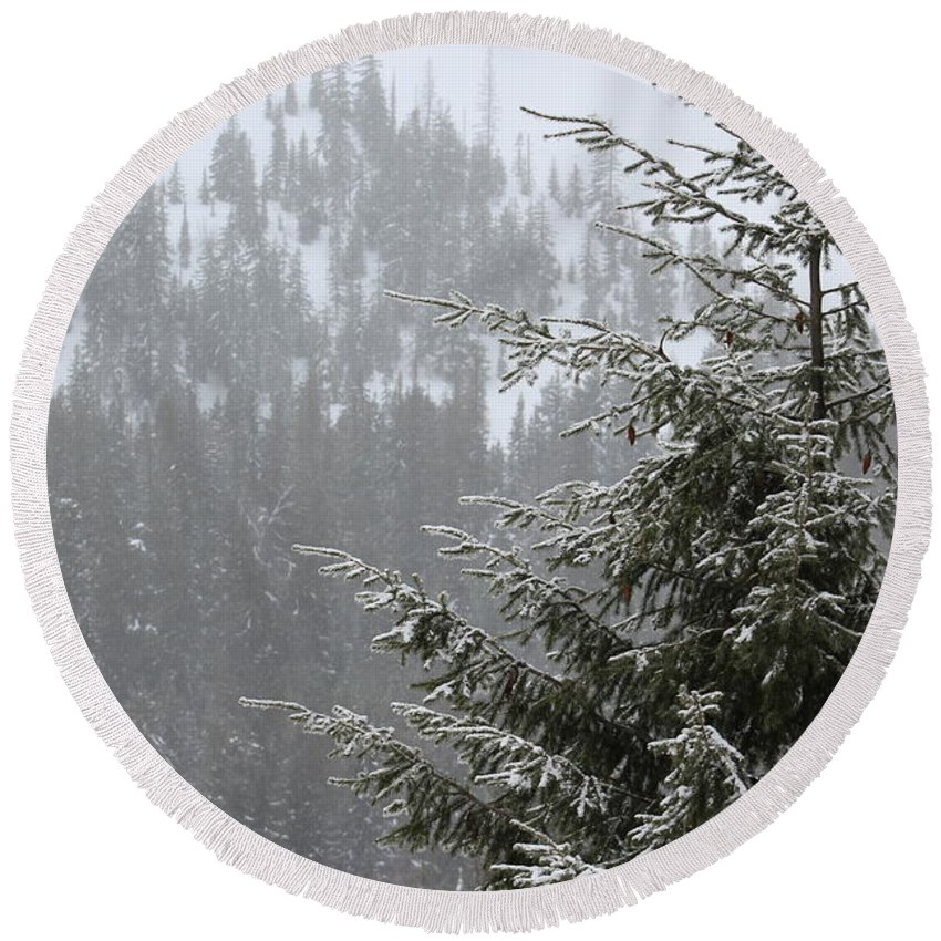 Winter Round Beach Towel featuring the photograph Winter In The Forest by LKB Art and Photography