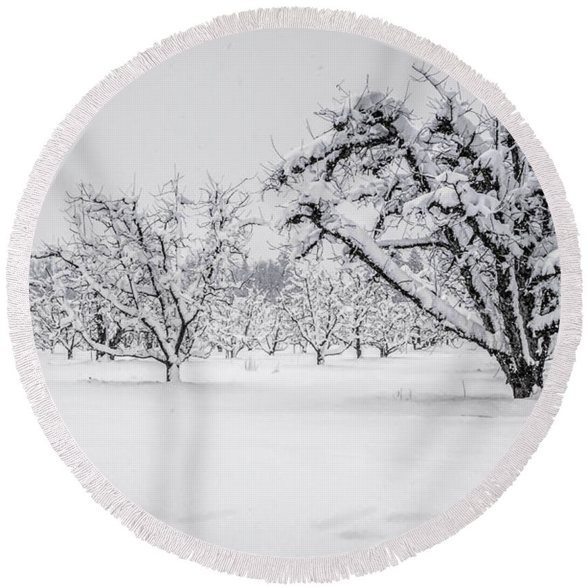 Orchard Round Beach Towel featuring the photograph Winter In The Orchard by Steph Gabler