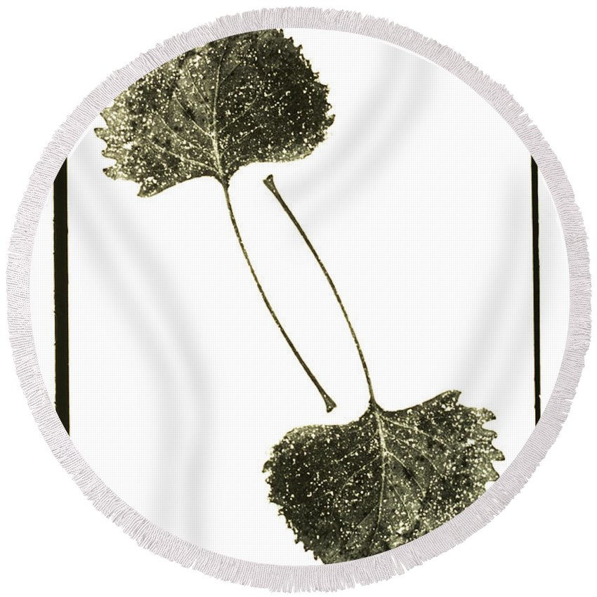 Fine Art Photography Round Beach Towel featuring the photograph Winter Leaf by Jerry McElroy