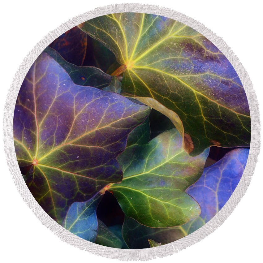 Leaves Round Beach Towel featuring the photograph Winter Leaves by Tara Turner