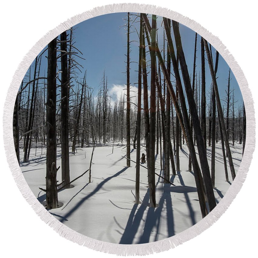 Winter Round Beach Towel featuring the photograph Winter Light by Jack Bell