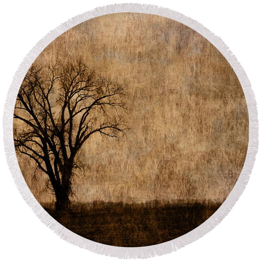 Tree Round Beach Towel featuring the photograph Winter Trees In The Bottomland 1 by Greg Matchick