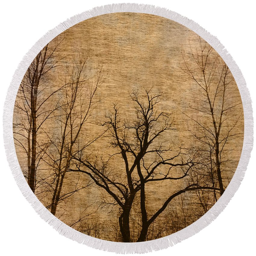 Trees Round Beach Towel featuring the photograph Winter Trees In The Bottomlands 2 by Greg Matchick