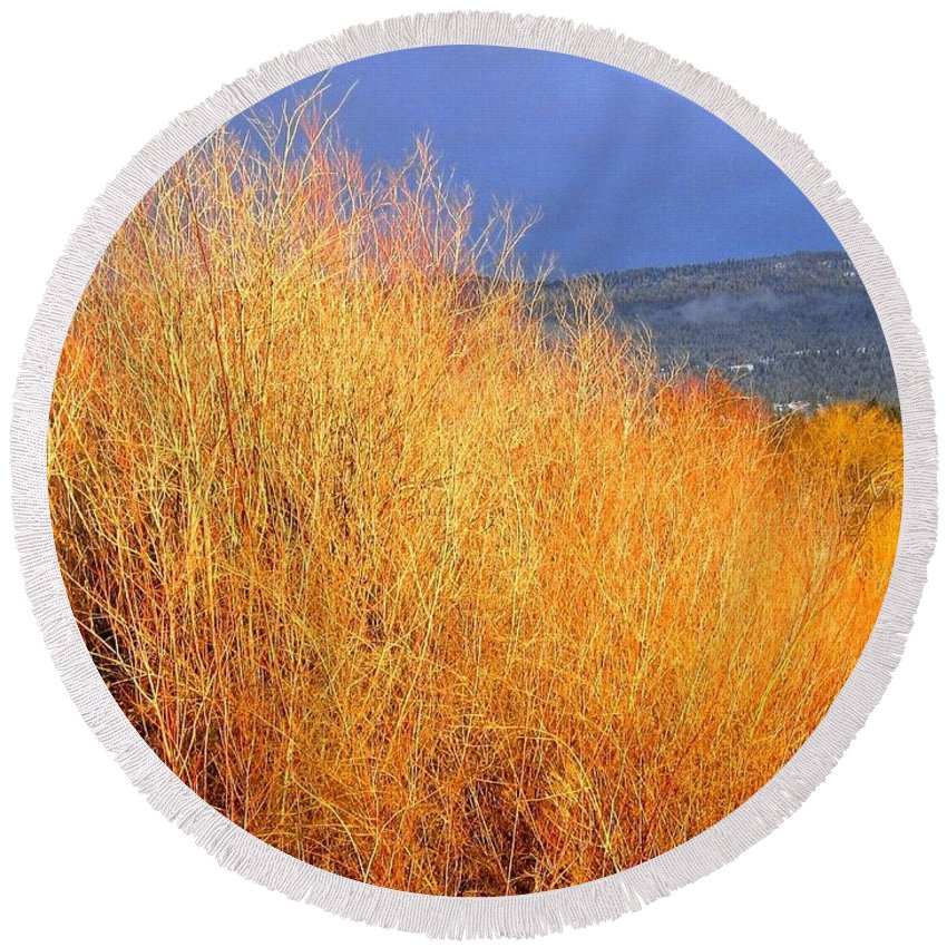 Willows Round Beach Towel featuring the photograph Winter Willows by Will Borden
