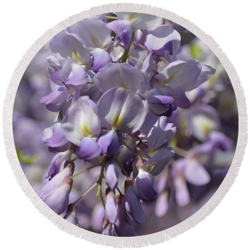 Wisteria 15-02 Round Beach Towel featuring the photograph Wisteria 15-02 by Maria Urso