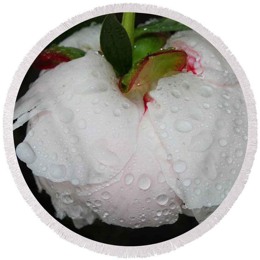 Peony Round Beach Towel featuring the photograph Without Umbrella by Jutta Maria Pusl