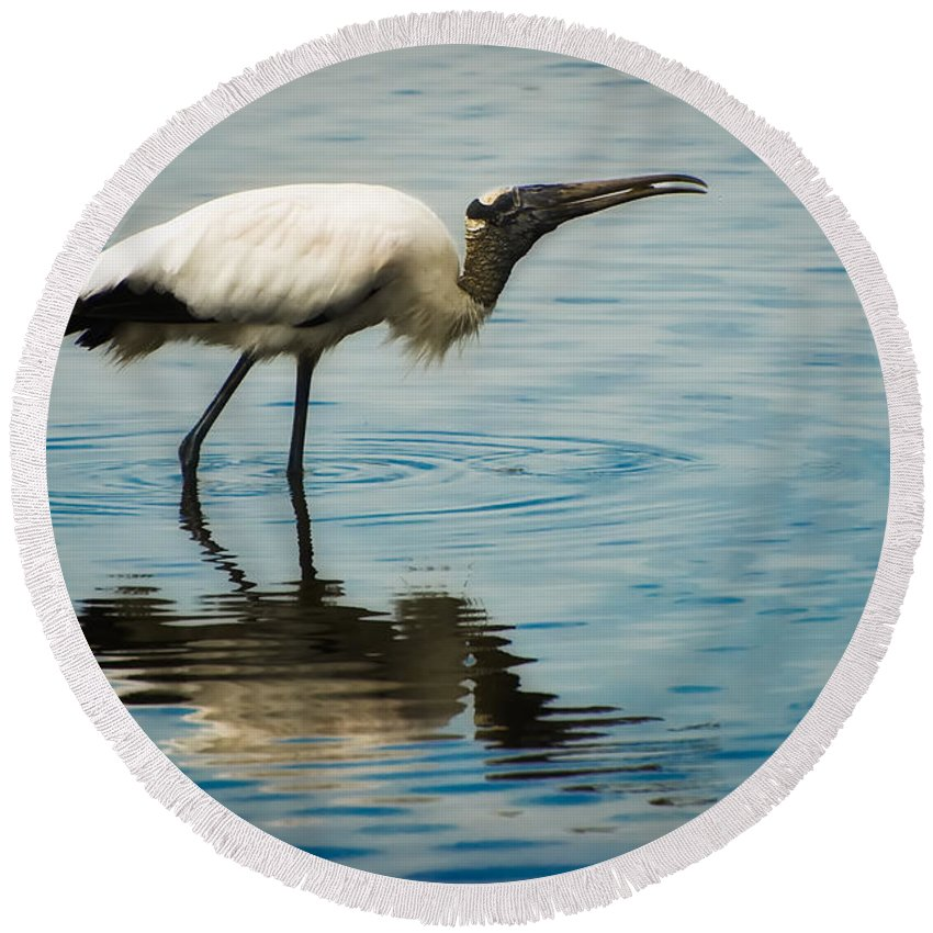 Stork Round Beach Towel featuring the photograph Wood Stork by Rich Leighton
