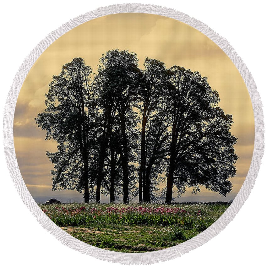 Woodburn Round Beach Towel featuring the photograph Woodburn Oregon - Sky Lights by Image Takers Photography LLC - Laura Morgan