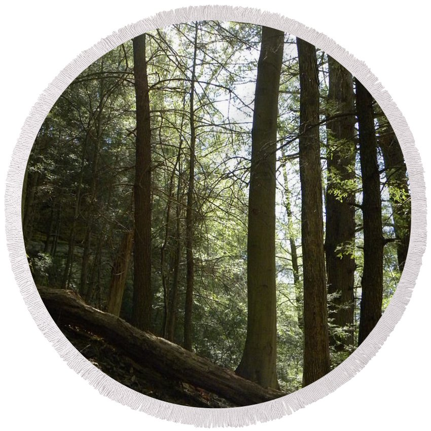 Woods Round Beach Towel featuring the photograph Wooded Serenity by Kimberly Owens