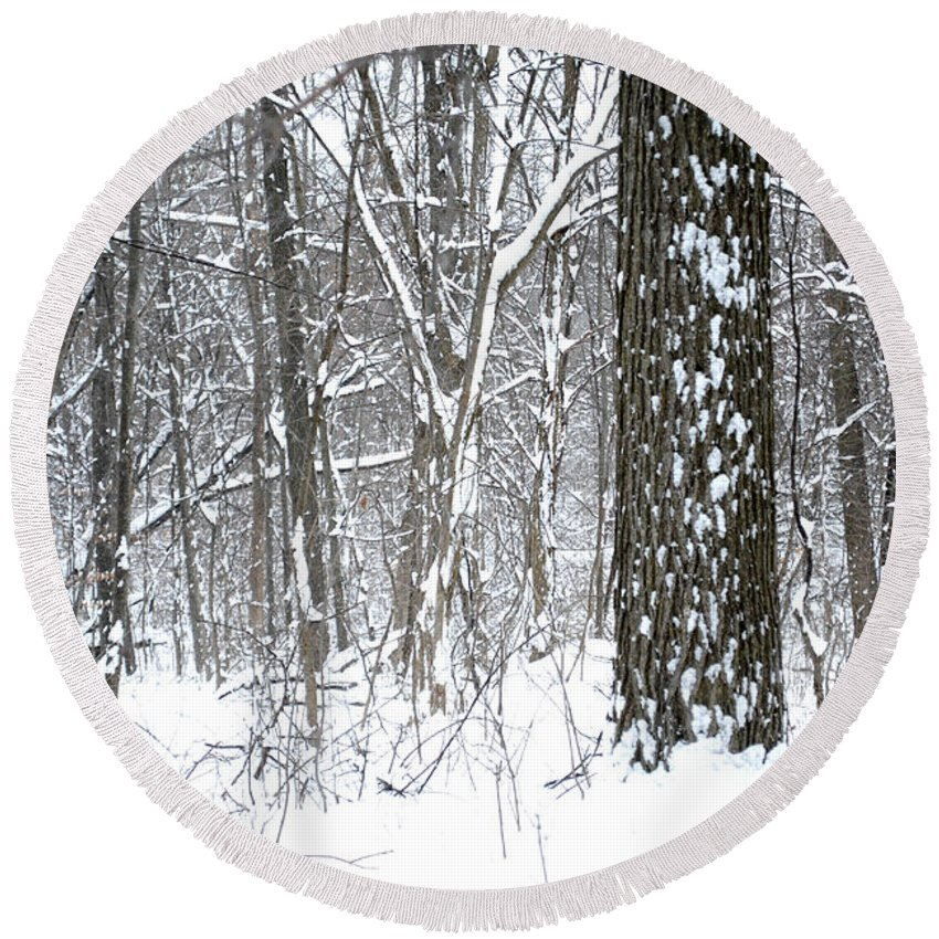 Winter Round Beach Towel featuring the photograph Woods In Winter by Stephen Becker