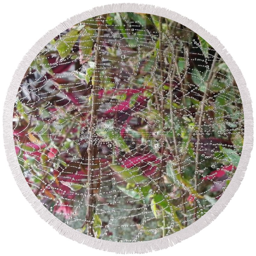 Spider Web Round Beach Towel featuring the photograph WWW by Michelle S White