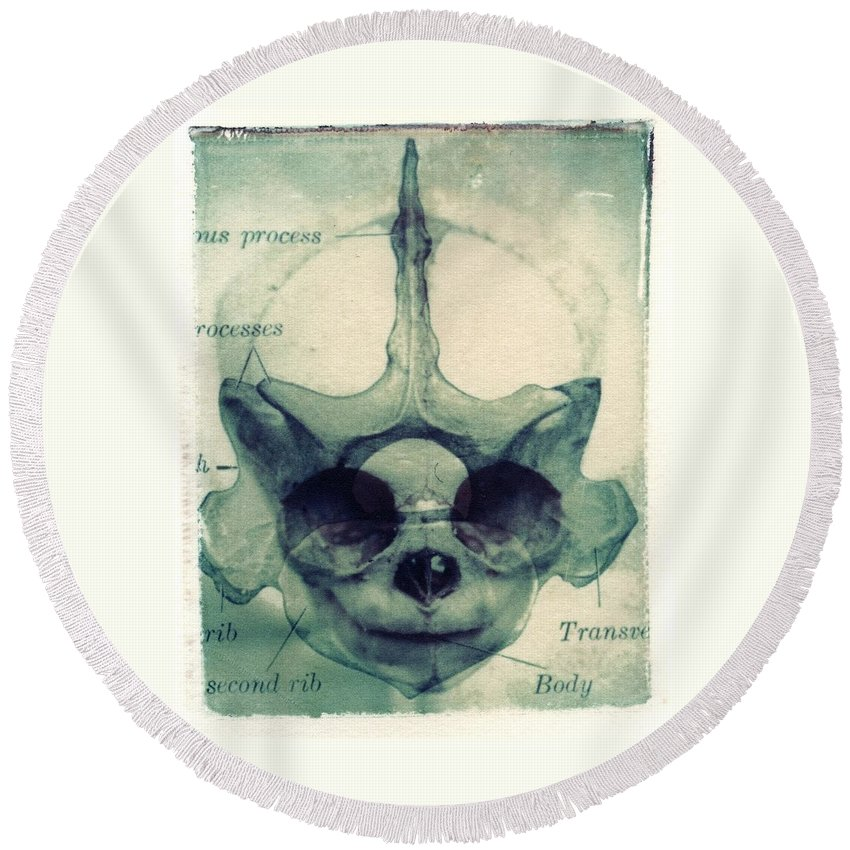 Polaroid Transfer Round Beach Towel featuring the photograph X Ray Terrestrial No. 13 by Jane Linders