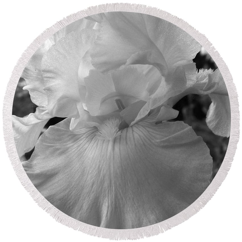Iris Round Beach Towel featuring the photograph Yellow And White Iris In Bw by Kathy McClure