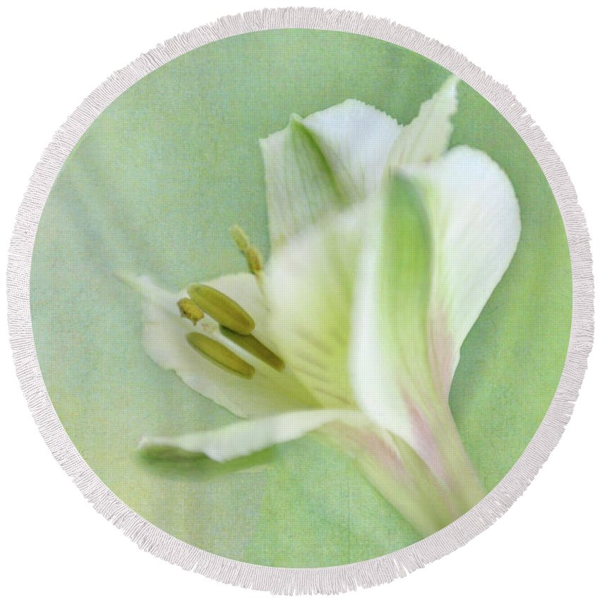 Alstroemeria Round Beach Towel featuring the photograph Yellow And White Peruvian Lily by David and Carol Kelly