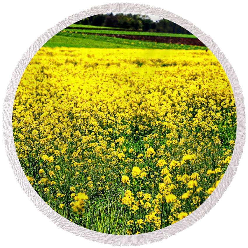 Flowers Round Beach Towel featuring the photograph Yellow Field by Bill Cannon