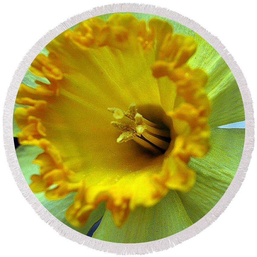 Clay Round Beach Towel featuring the photograph Yellow Floral by Clayton Bruster