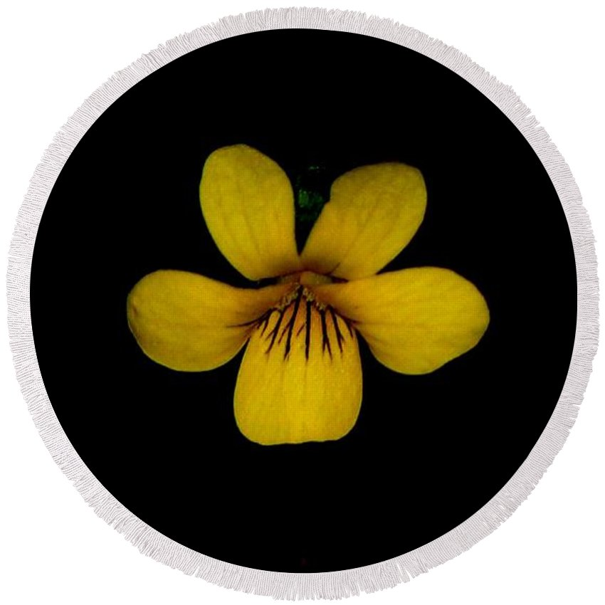 Landscape Round Beach Towel featuring the photograph Yellow Flower 1 by David Lane